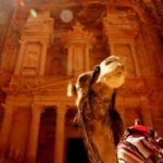 camel in front of a monument in Amman, Jordan
