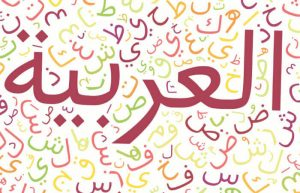 Modern Standard Arabic and Colloquial Arabic, Which to Choose?