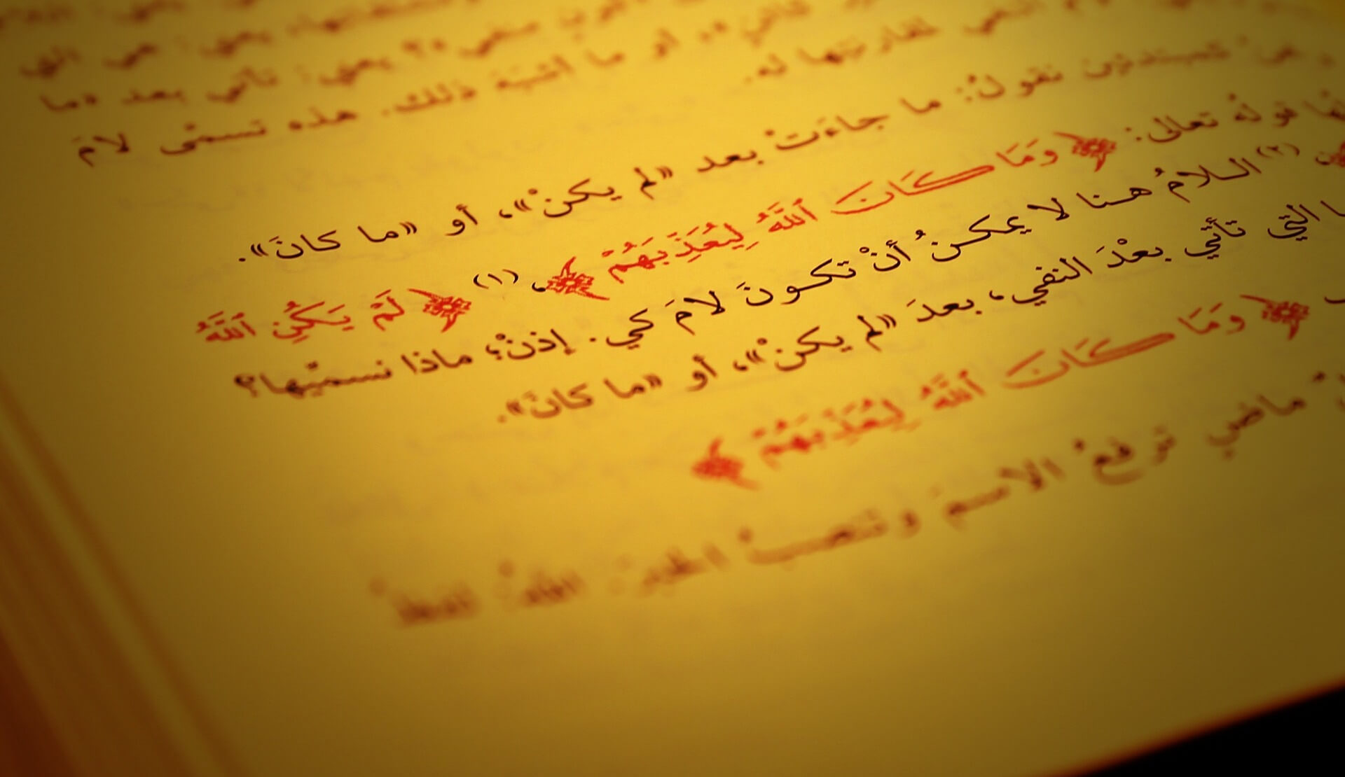 Online Arabic classes, a first contact with Arabic language from anywhere